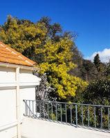 Location Villa Toulon (83000)