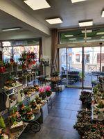 commerce fleurs plantes cadeaux à vendre