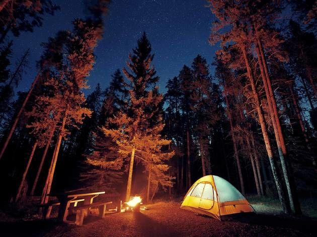 Location Terrain Terrain Pour Vos Vacances  à La pouge