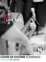 Cours de Guitare flamenco Particuliers & Collectifs à Lyon 0