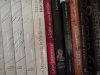 Correction de mémoires, thèses, tous travaux d'écriture 0