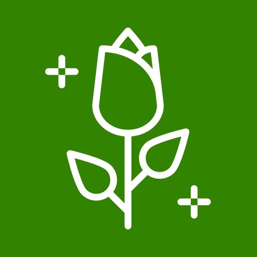 Paysagiste, Création et Entretien de Jardins