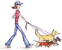 Dog sitter 0 92300 Levallois-perret