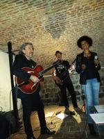 Trio chanteuse jazz 0