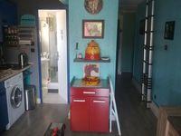 Bricolage, entetien, re?novation, peinture 0 83250 La londe-les-maures