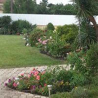 Entretien jardin - jardinier- 0 31320 Castanet-tolosan