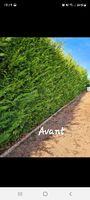 Jardinier 0 39380 La loye