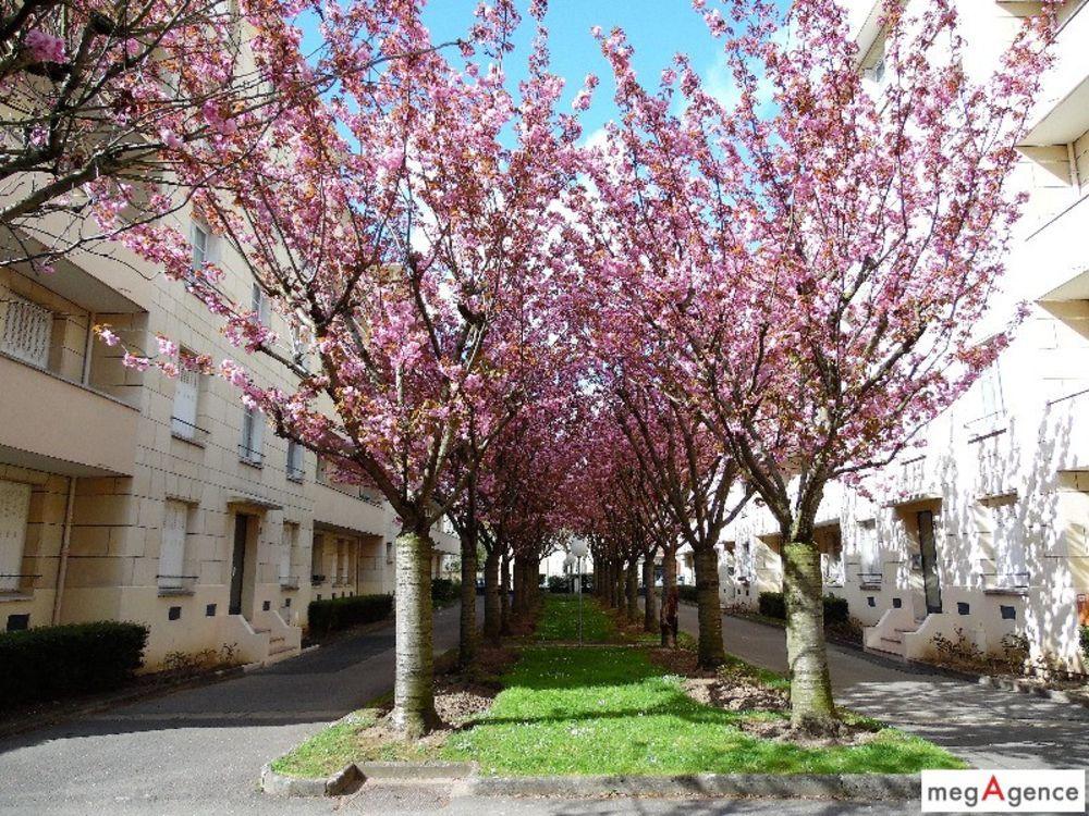 Vente Appartement 3 pièces 69m² - Pont de Bry/Centre ville - Perreux  à Le perreux-sur-marne