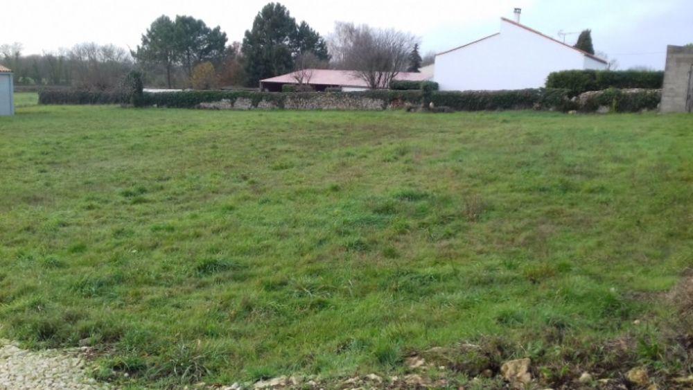 Vente Terrain terrain au calme 852m2 façade 19 m  à Cabariot