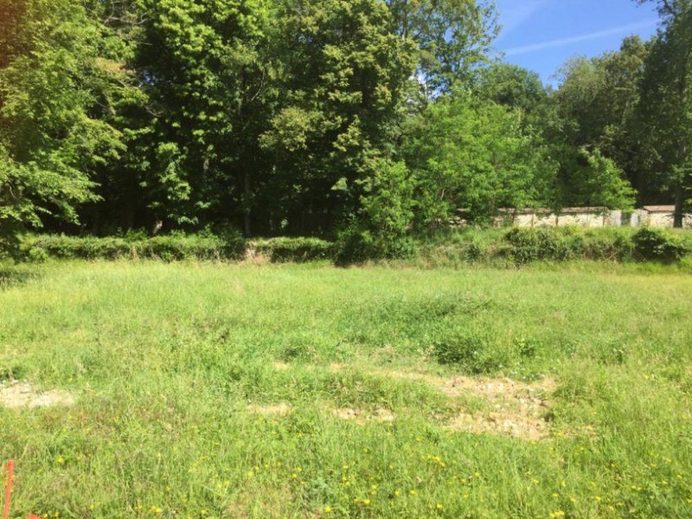 Vente Terrain très beau terrain à batir dans le parc du chateau Nemours