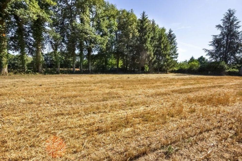 Vente Terrain Terrain de 1,4623 ha à vendre à Saint-Maurice-la-Souterraine (  à Saint-maurice-la-souterraine