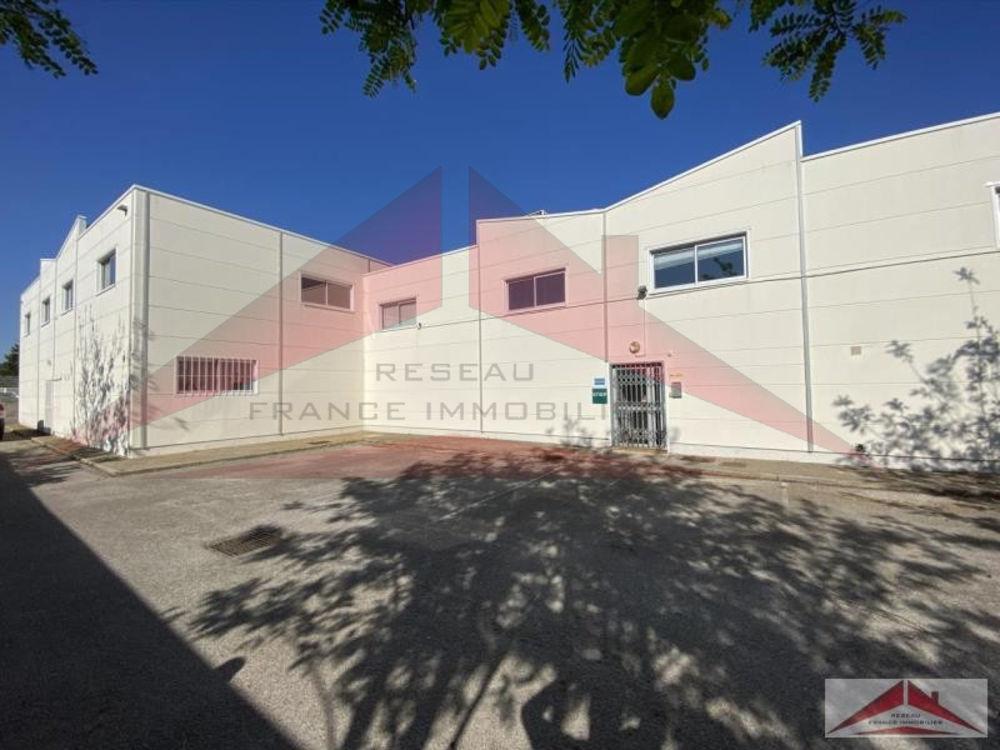 Montpellier Fréjorgues, accès A709, très beau local d'activité industriel ou commercial de 560 m2 composé ...