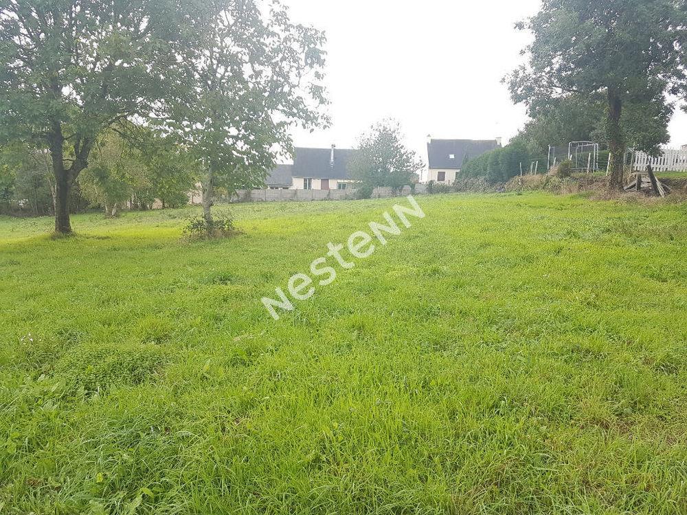 Vente Terrain Terrain  à bâtir de 1536 m² à Loyat (56800) Loyat