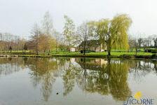 Propriété sur 1 hectare 48 avec plan d'eau 299500 Mayenne (53100)