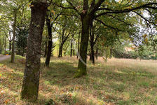 Terrain Proche Castelnaudary 929 m2 29000 Castelnaudary (11400)