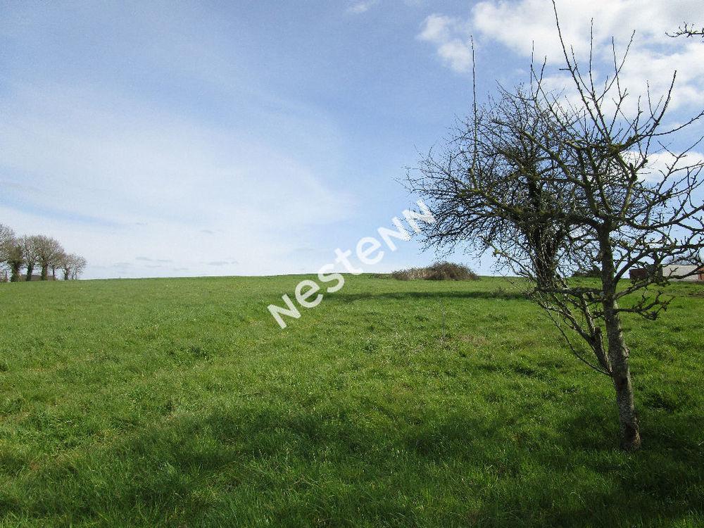 Vente Terrain Terrain à bâtir de 1430 m² à Loyat (56800) Loyat