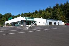 Local commercial LONGEVILLE LES SAINT AVOLD - 600 m² 2900