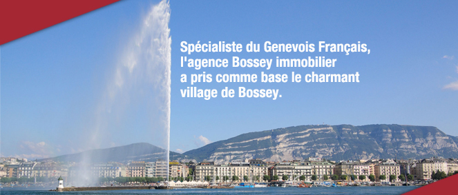 BOSSEY IMMOBILIER, agence immobilière 74