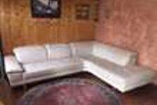 Canapé cuir  (74) - 1 500 €