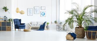 LIMMOBILIER.NET, agence immobilière 74