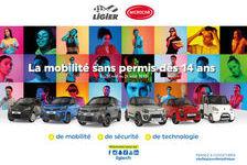 MICROCAR Voiture sans permis  occasion Boissy-Saint-Léger 94470