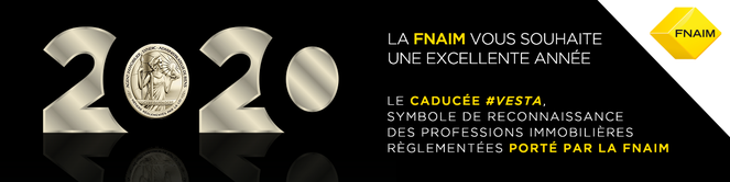 THE NEW AGENCY, agence immobilière 02