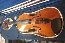 violon maestro dos 1 pièce Bird - eye 3900 Le Tampon (97430)