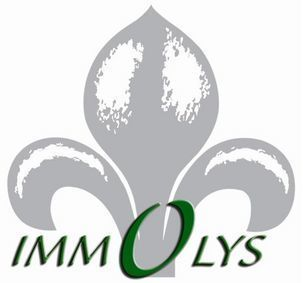 IMMOLYS, agence immobilière 71