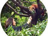 1 activité 'soigneur d'un jour' au Zoo d'Asson (64) 20 Asson (64)