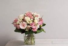Commerce fleurs, plantes, articles cadeaux et décorations. 134400