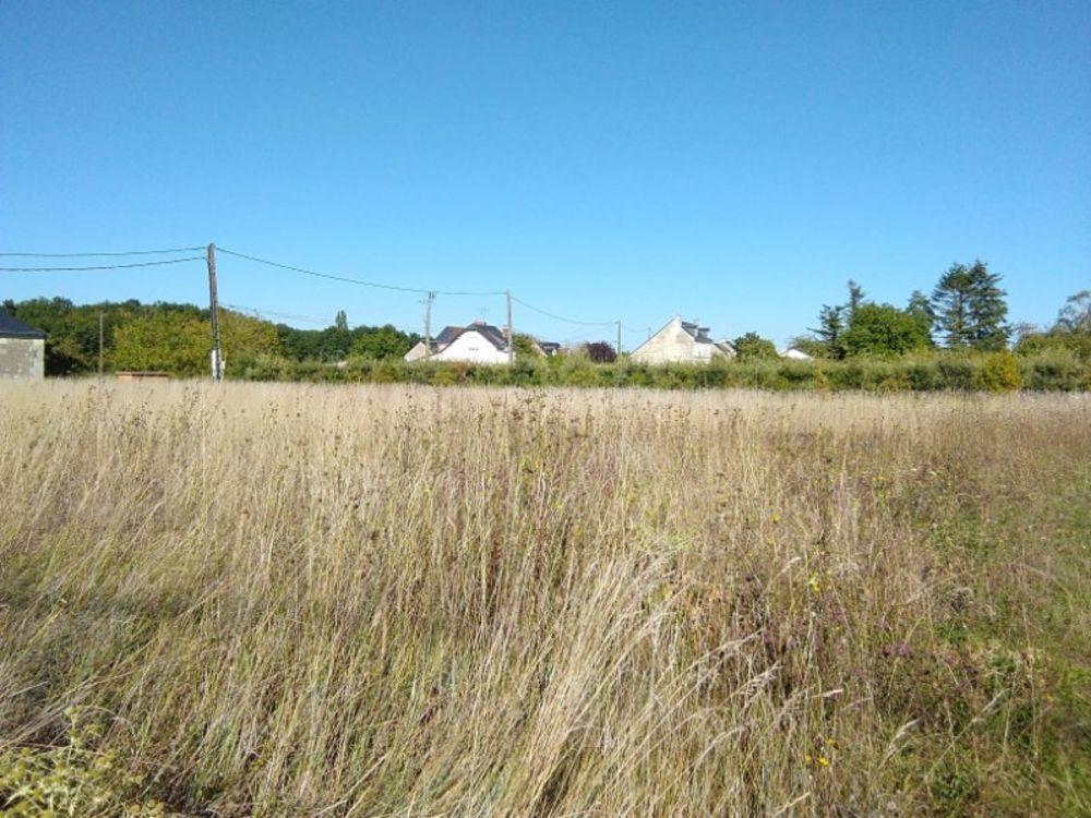 Vente Terrain terrain Chinon 1087m² Chinon