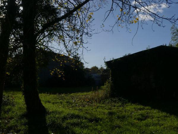 Vente Loft Surprenant ensemble agricole  à Montreverd