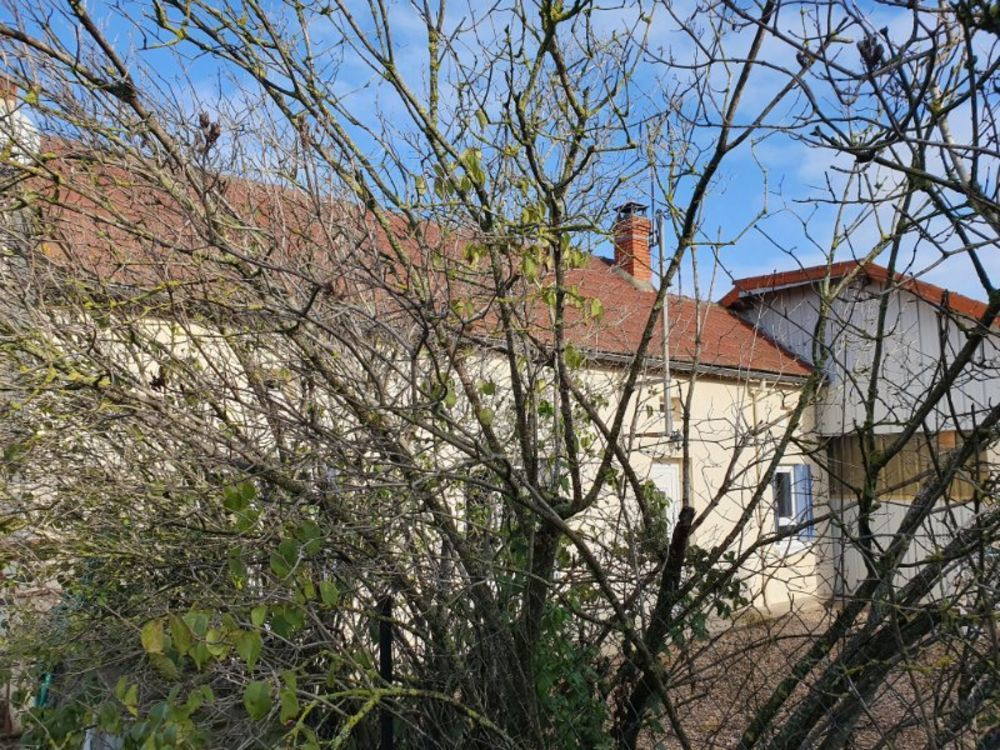 Vente Maison Belle longère avec granges, piscine et terrain  à Ebreuil