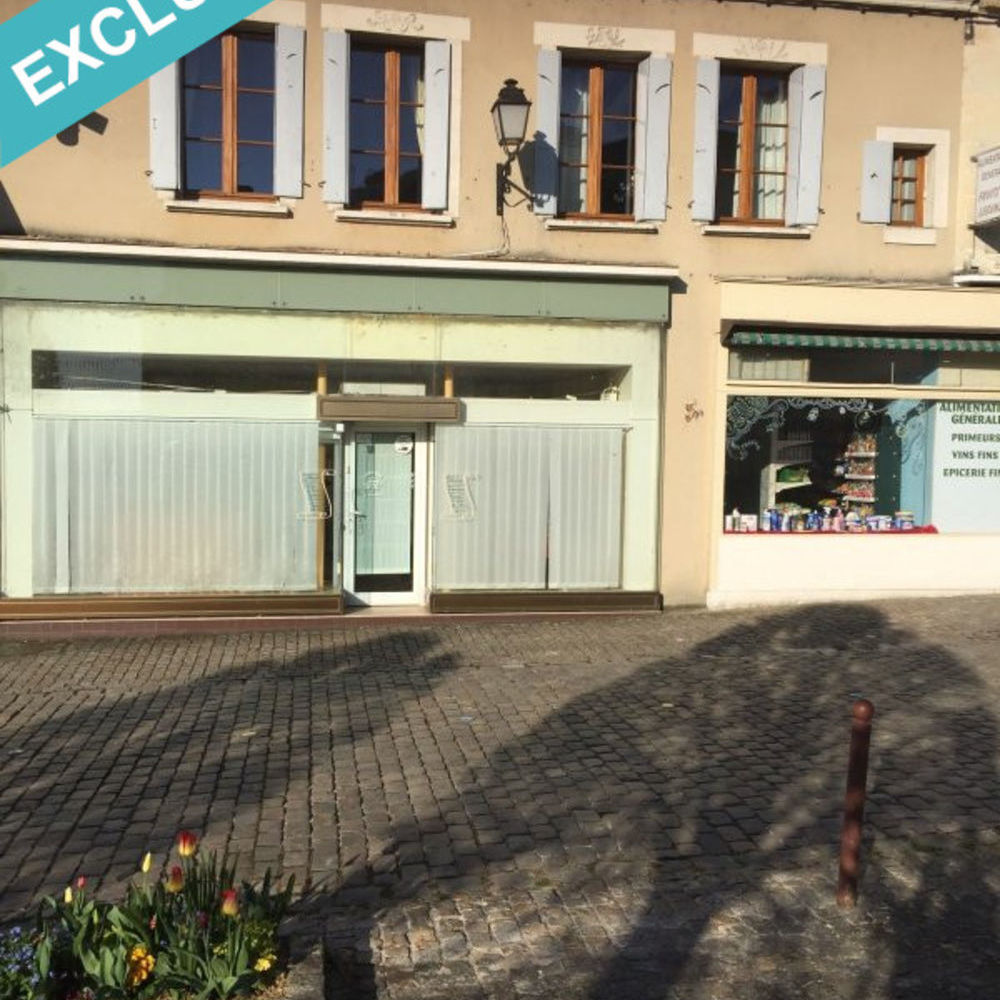 Vente Immeuble Immeuble stylé du 17 ème siècle Chatillon-sur-indre