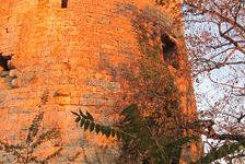 Vente Loft Castelnau-sur-l'Auvignon (32100)