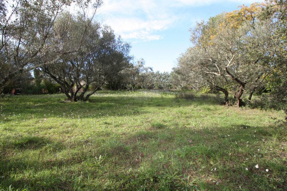 Vente Terrain Magnifique terrain plat de 2000 m² à Lorgues (83510).  à Lorgues