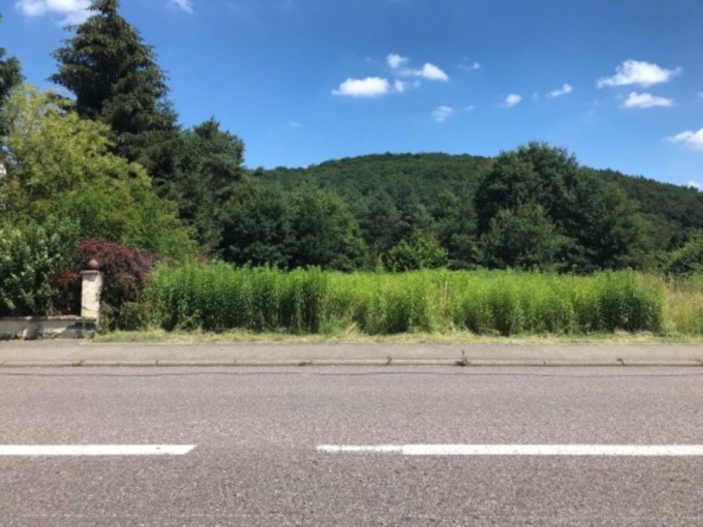Vente Terrain Pour les amateurs d'espace hors lotissement, terrain constructible de 33 ares  à Creutzwald