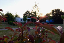 Camping Au Pré de l'Etang - Mobil-home 31m² Santa Fé Duo 2 chambres Télévision - Terrasse - Accès Internet - Jeux jardin - Voitu Pays de la Loire, Sainte-Foy (85150)