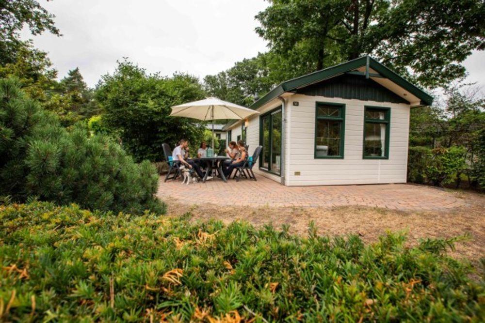 Recreatiepark 't Gelloo 4 Piscine collective - Télévision - Terrasse - place de parking en extérieur - Accès Internet . . . Bretagne, Edern (29510)