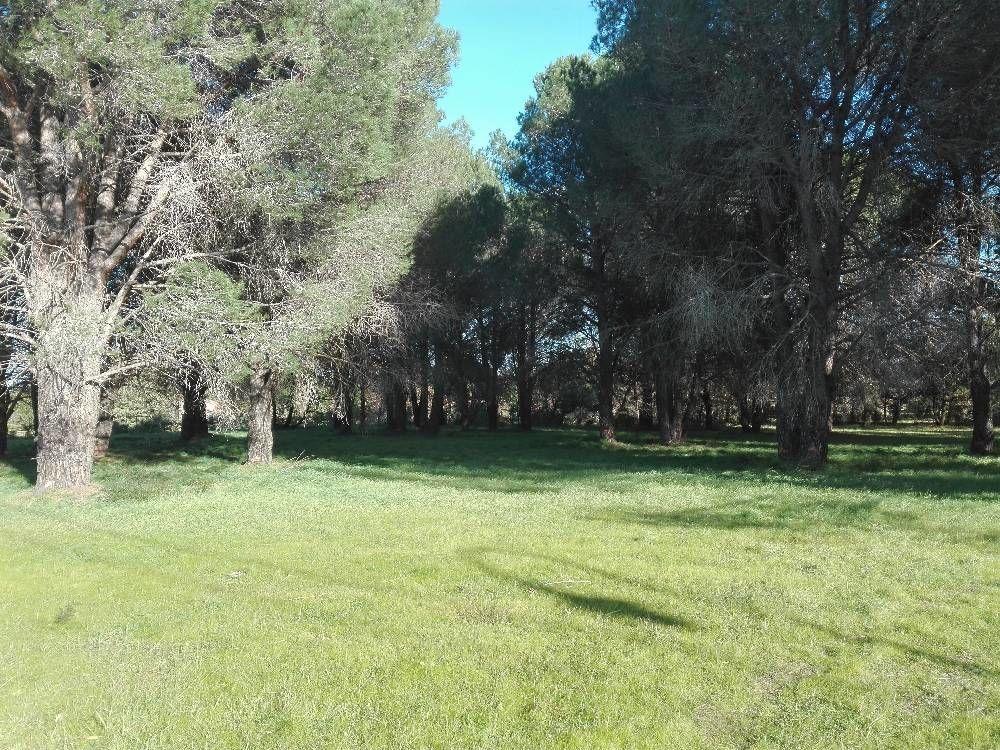 Vente Terrain Terrain constructible de 500m² à vendre à LAROQUE DES ALBERES  à Laroque des alberes