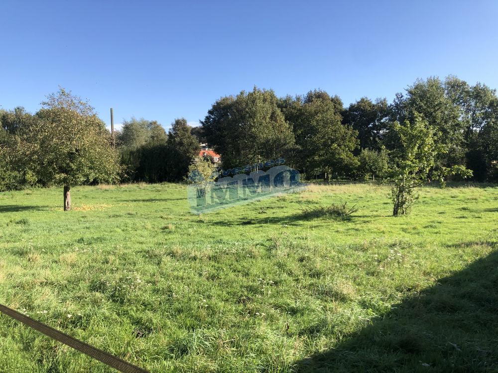 Vente Terrain Terrain de 2500 m2 à Aubigny En Artois Aubigny en artois