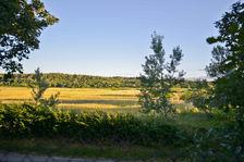 Vente Terrain Saint-Laurent-la-Vernède (30330)