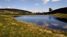 sur 1,8 hectare de prés. Calme 212000 Saint-André-en-Vivarais (07690)
