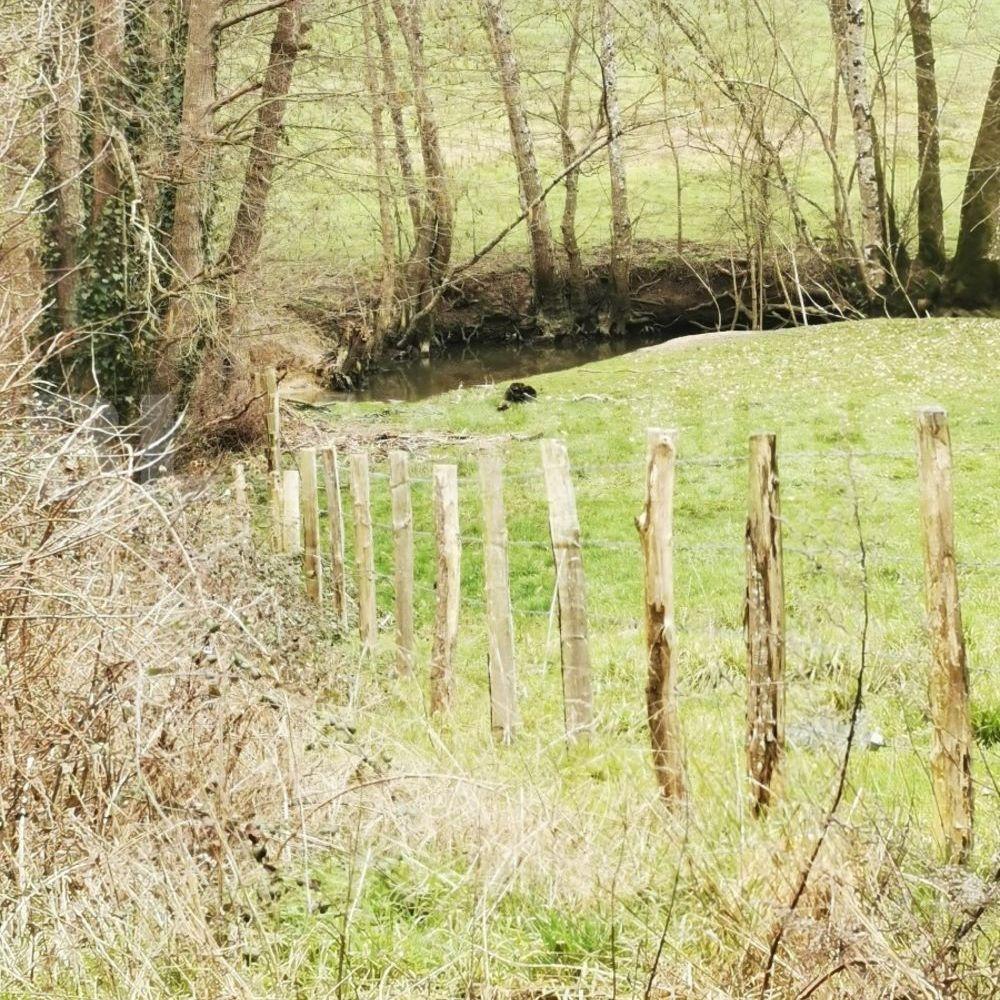 Vente Terrain terrain Nogent-le-rotrou