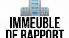 ENSEMBLE IMMOBILIER PARTIE COMMERCIALE + HABITATIONS 940000