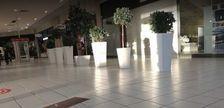 Locaux commerciaux - A LOUER - 287 m² non divisibles