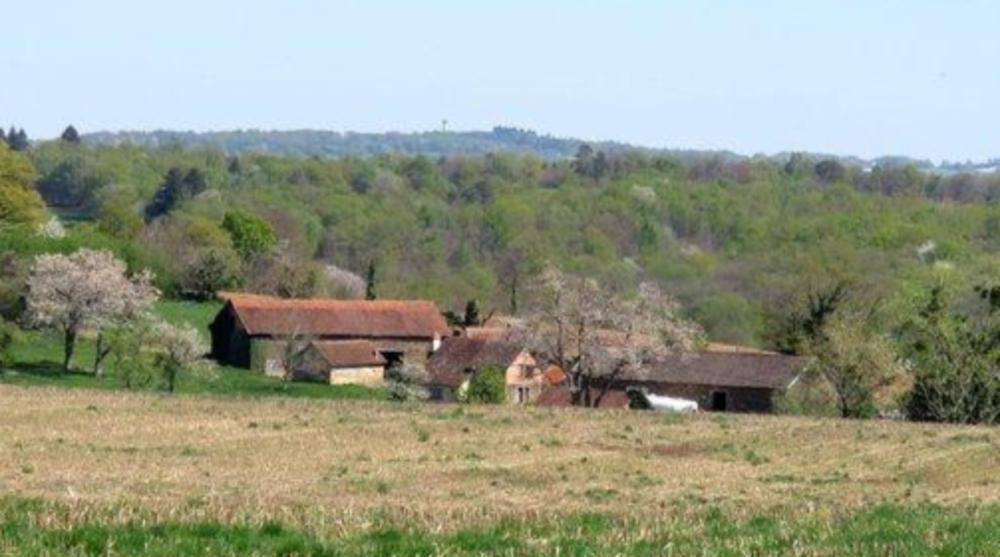 Vente Ferme Hameau à vendre sur 2 ha  à Savignac ledrier