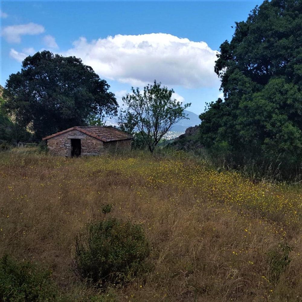 Vente Terrain TERRAIN AGRICOLE A CAURO - VUE GOLFE AJACCIO  à Cauro