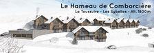 Chalet 102 m2 - skis aux pieds - 510000 La Toussuire (73300)