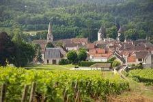 Savigny-lès-Beaune (21420)